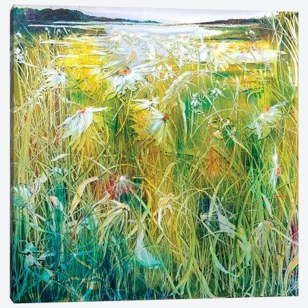 The Millpond Canvas Print #WLM24} by Jen Williams Canvas Art Print