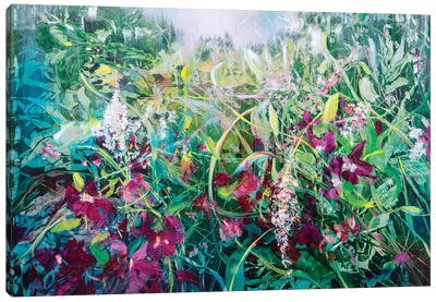 Wild Bouganville Canvas Art Print