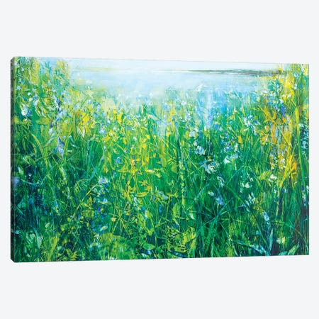 Wild Iris Canvas Print #WLM27} by Jen Williams Canvas Print