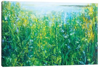 Wild Iris Canvas Art Print