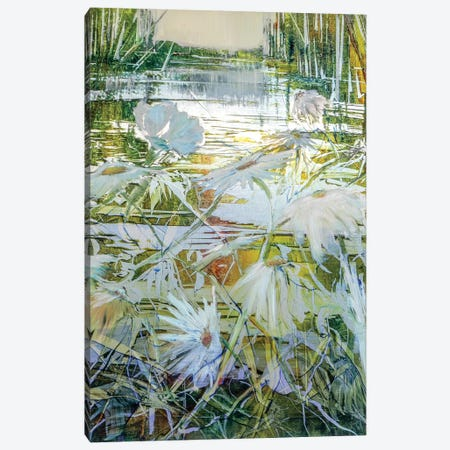 First Light Canvas Print #WLM3} by Jen Williams Canvas Wall Art