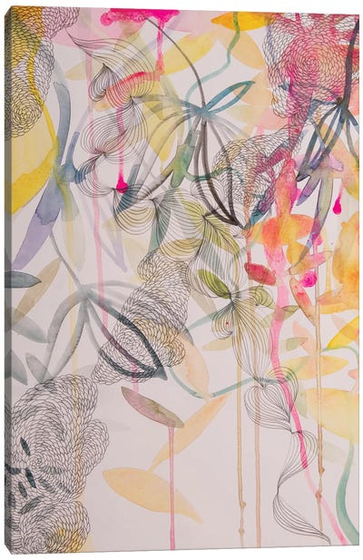 The Wonderful Garden II Canvas Art Print