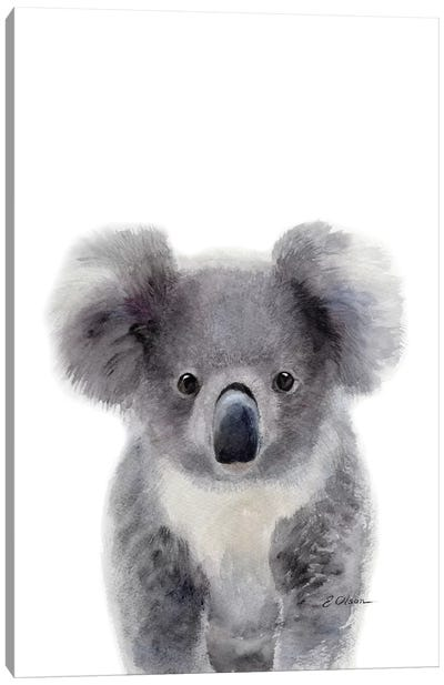 Baby Koala Canvas Art Print