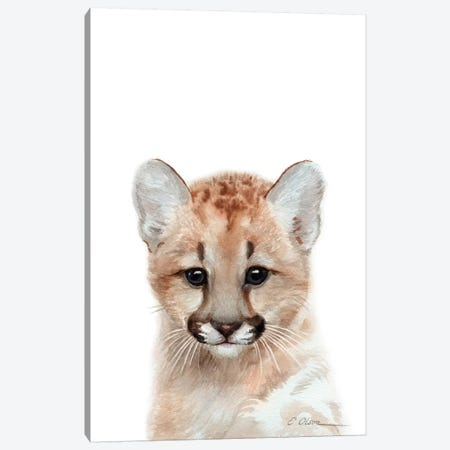 Baby Mountain Lion Canvas Print #WLU104} by Watercolor Luv Canvas Wall Art