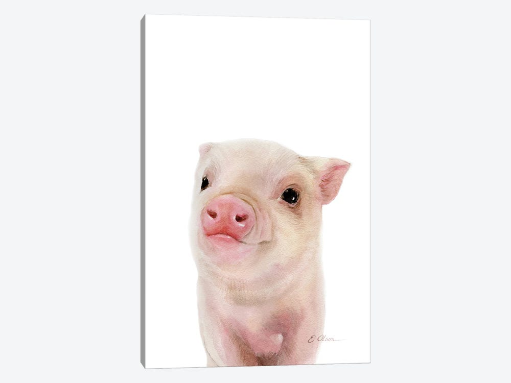 Baby Pig by Watercolor Luv 1-piece Canvas Print