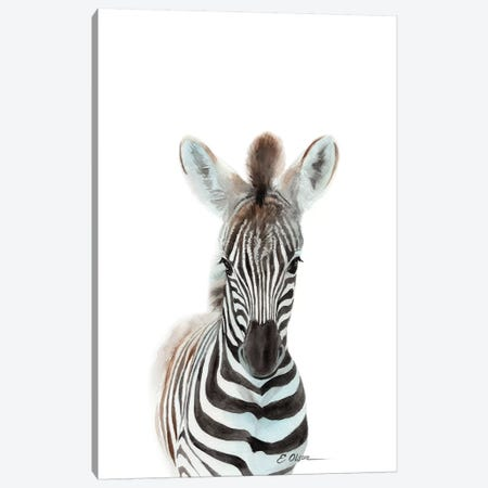 Baby Zebra Canvas Print #WLU109} by Watercolor Luv Canvas Art Print