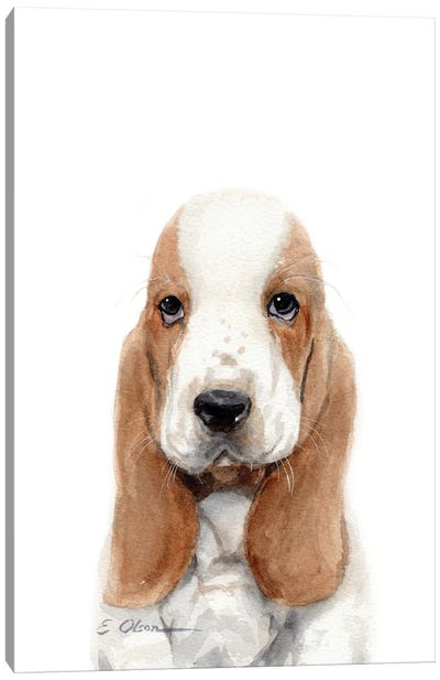 Basset Hound Puppy Canvas Art Print