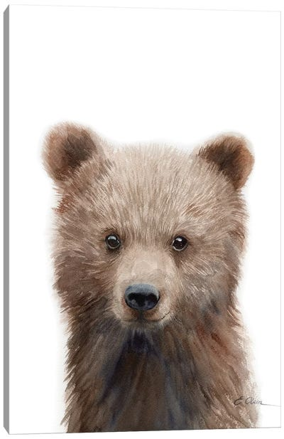 Grizzly Bear Cub Canvas Art Print