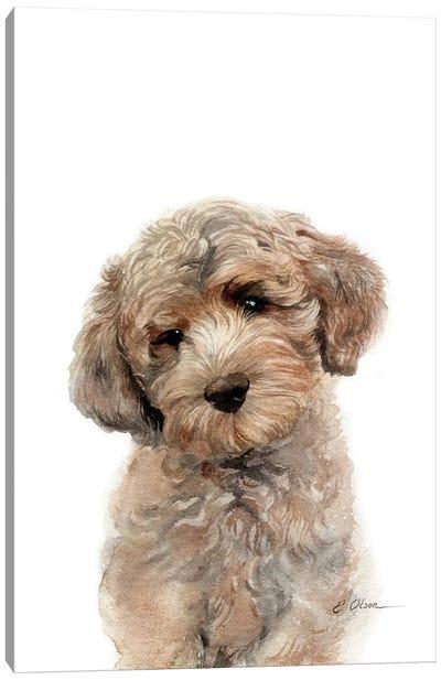 Brown Golden Doodle Puppy Canvas Art Print