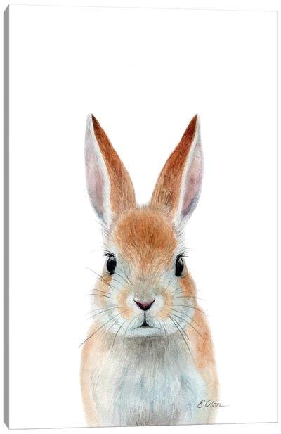 Rabbit Ears Canvas Art Print