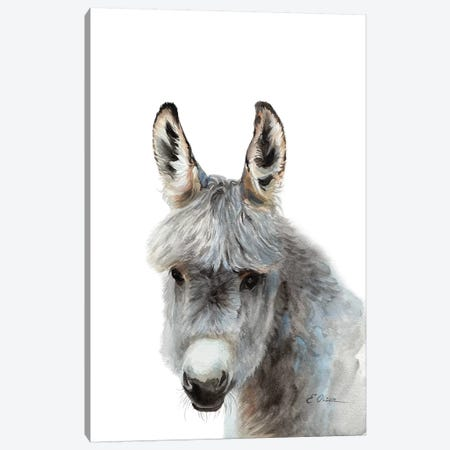 Baby Donkey Canvas Print #WLU116} by Watercolor Luv Canvas Art Print