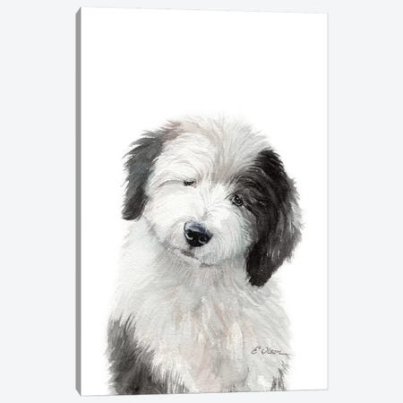 Old English Sheepdog Puppy Canvas Print #WLU118} by Watercolor Luv Canvas Art
