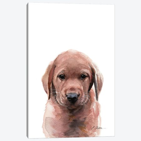 Fox Red Labrador Puppy Canvas Print #WLU119} by Watercolor Luv Canvas Artwork