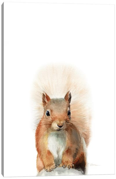 Happy Squirrel Canvas Art Print