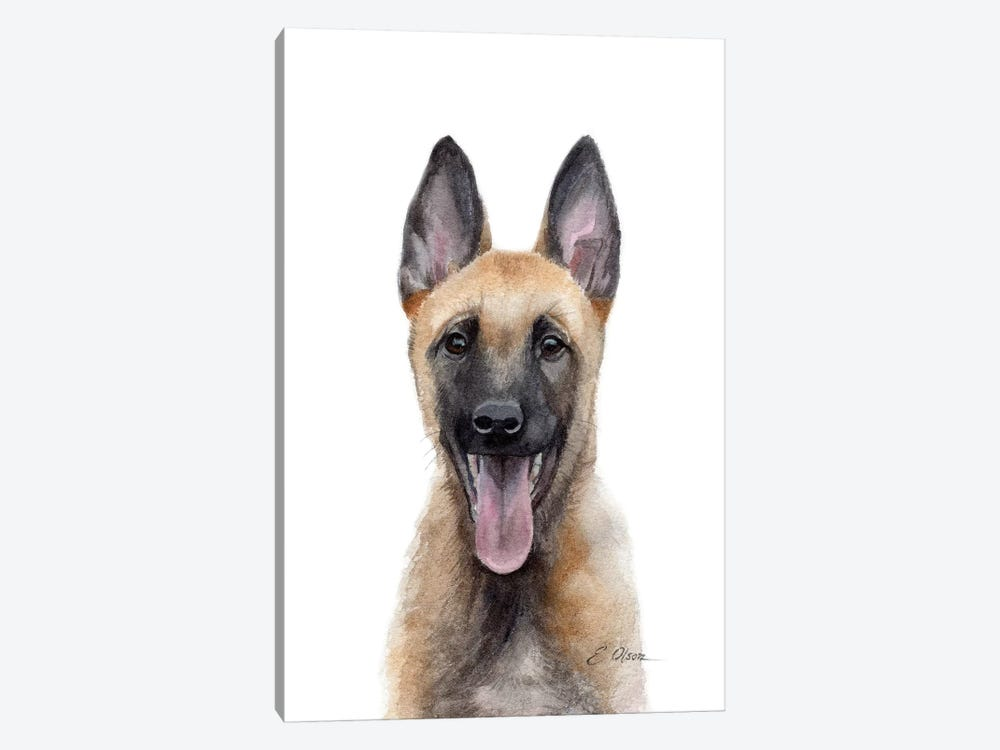Belgian Malinois Puppy by Watercolor Luv 1-piece Canvas Wall Art