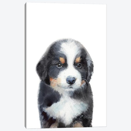 Bernese Mountain Dog Puppy Canvas Print #WLU14} by Watercolor Luv Canvas Art