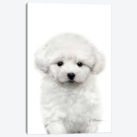 Bichon Frise Puppy Canvas Print #WLU15} by Watercolor Luv Canvas Artwork