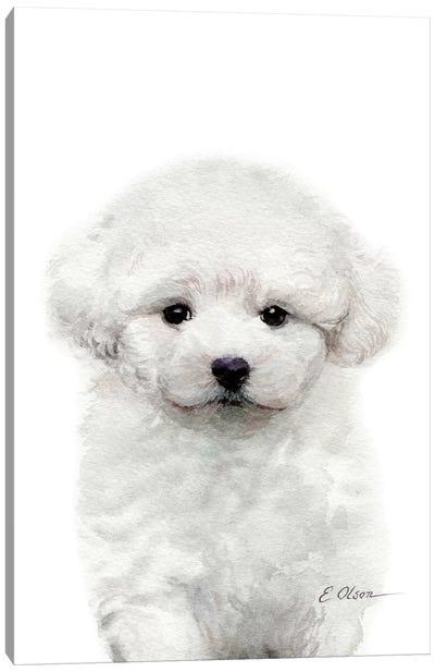 Bichon Frise Puppy Canvas Art Print