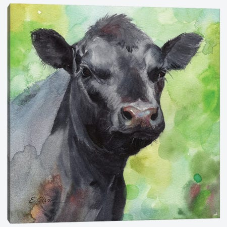 Black Angus Calf Canvas Print #WLU16} by Watercolor Luv Canvas Art