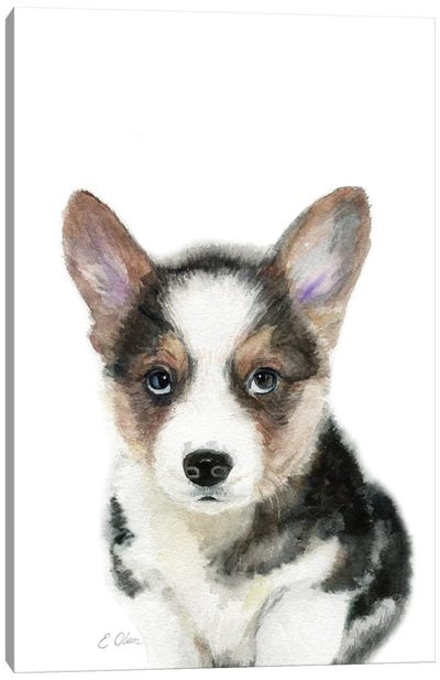 Black Corgi Puppy Canvas Art Print