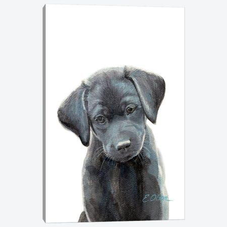 Black Lab Puppy I Canvas Print #WLU19} by Watercolor Luv Canvas Art Print