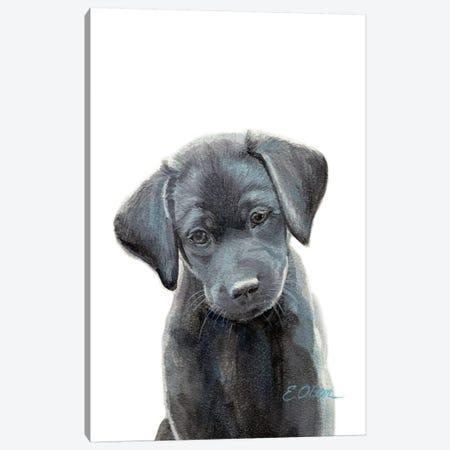 Black Lab Puppy I Canvas Print #WLU19} by Watercolor Luv Canvas Art Print