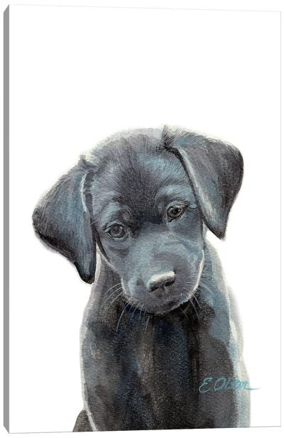 Black Lab Puppy I Canvas Art Print