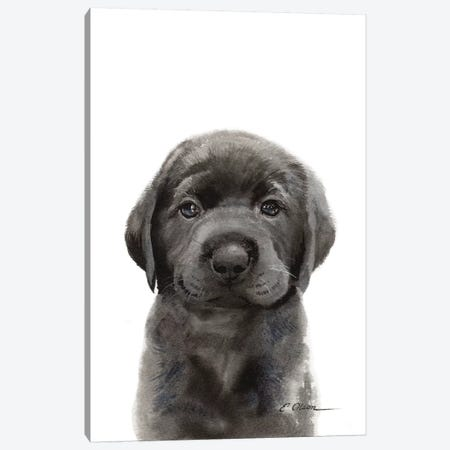 Black Lab Puppy II Canvas Print #WLU20} by Watercolor Luv Canvas Artwork