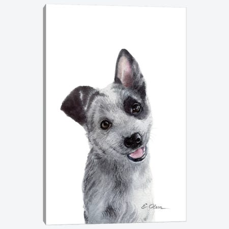 Blue Heeler Puppy Canvas Print #WLU21} by Watercolor Luv Canvas Artwork