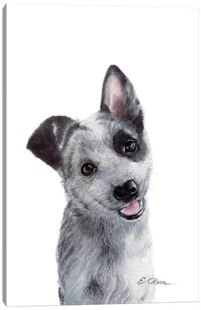 Blue Heeler Puppy Canvas Art Print