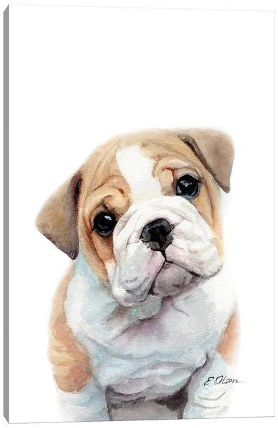 Bulldog Puppy Canvas Art Print