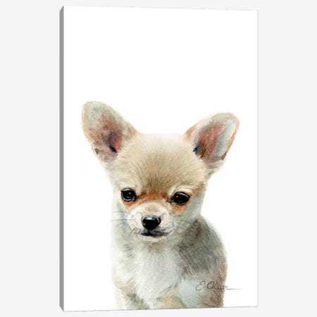 Chihuahua Puppy Canvas Print #WLU24} by Watercolor Luv Art Print