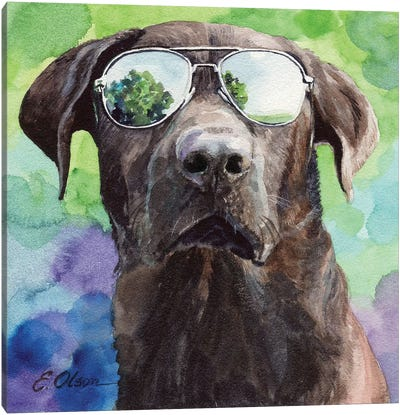 Chocolate Lab in Aviators Canvas Art Print