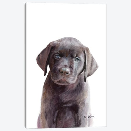 Chocolate Lab Puppy Canvas Print #WLU26} by Watercolor Luv Canvas Print