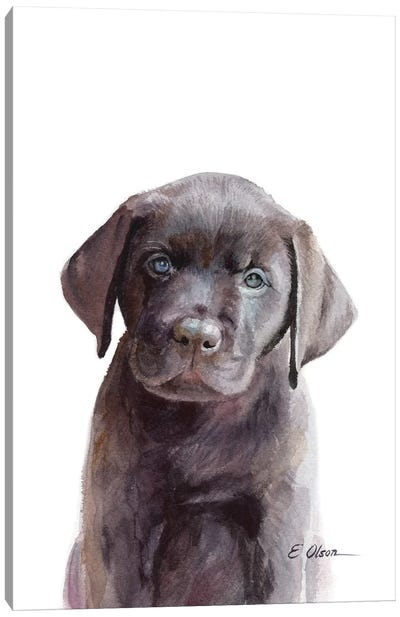 Chocolate Lab Puppy Canvas Art Print