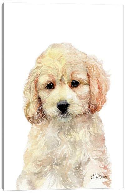 Cockapoo Puppy Canvas Art Print