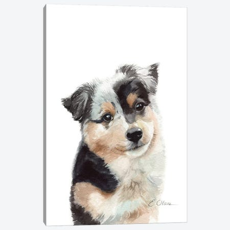 Australian Shepherd Puppy Canvas Print #WLU2} by Watercolor Luv Canvas Print