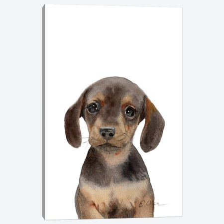 Dachshund Puppy Canvas Print #WLU31} by Watercolor Luv Canvas Print