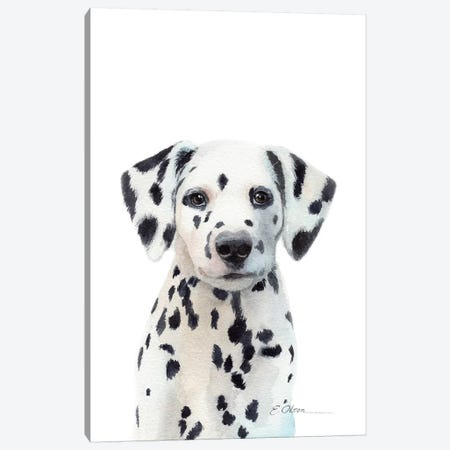 Dalmatian Puppy Canvas Print #WLU32} by Watercolor Luv Canvas Art Print