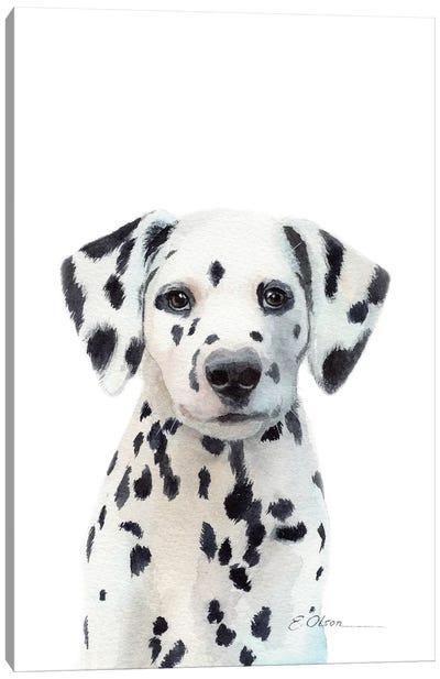 Dalmatian Puppy Canvas Art Print