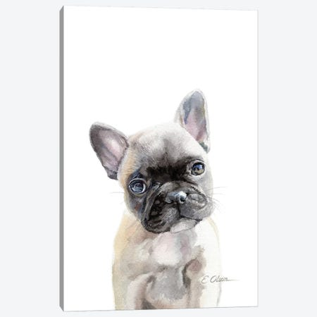 French Bulldog Puppy Canvas Print #WLU33} by Watercolor Luv Canvas Print