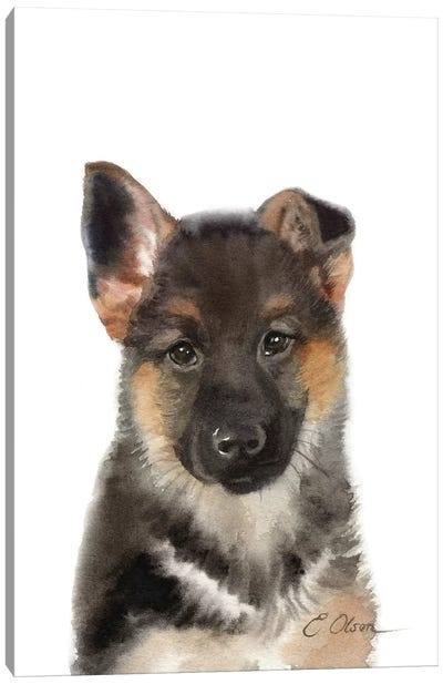 German Shepherd Puppy Canvas Art Print