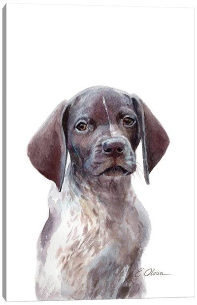 German Shorthaired Pointer Puppy Canvas Art Print