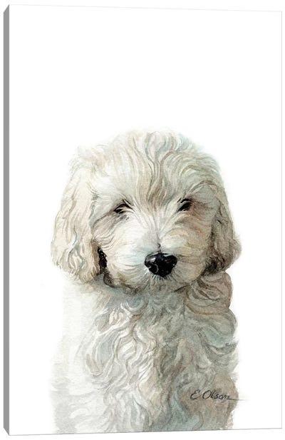 Golden Doodle Puppy Canvas Art Print