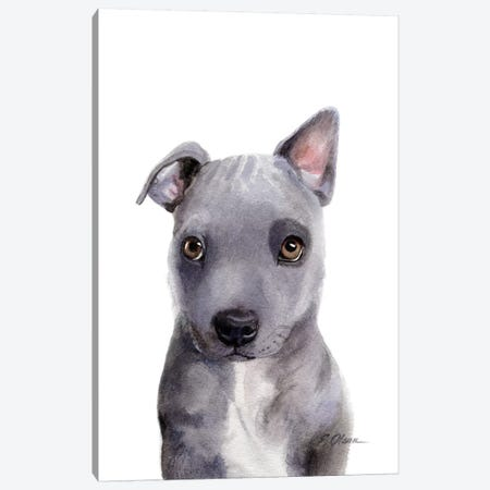 Grey Mixed Breed Puppy Canvas Print #WLU39} by Watercolor Luv Art Print
