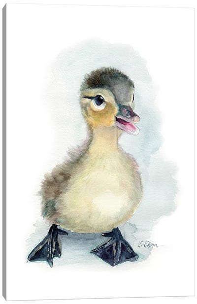 Baby Duckling Canvas Art Print