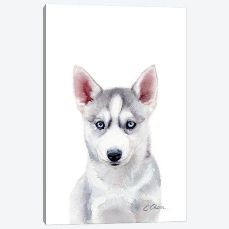 Husky Puppy Canvas Print #WLU41} by Watercolor Luv Canvas Art