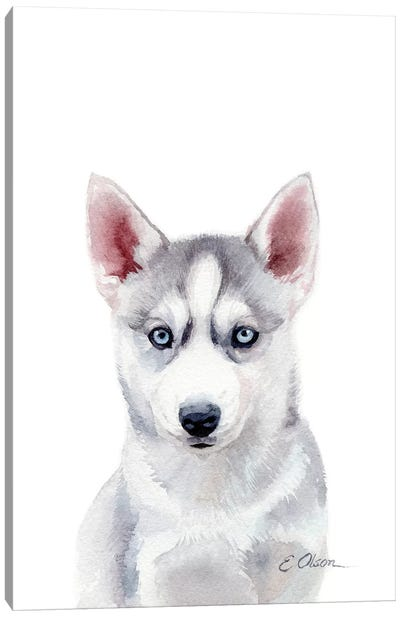 Husky Puppy Canvas Art Print