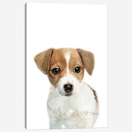 Jack Russell Terrier Puppy Canvas Print #WLU43} by Watercolor Luv Canvas Wall Art
