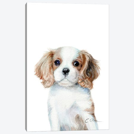 King Charles Cavalier Spaniel Puppy Canvas Print #WLU44} by Watercolor Luv Canvas Print